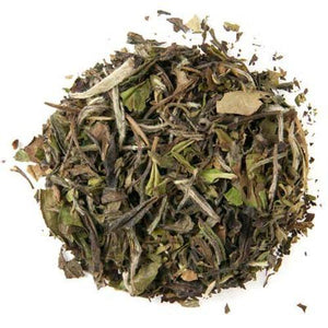 Pai Mu Tan Tea 500g - Coffee Wholesale USA
