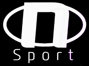 N Sport Team Logo Sticker (x2) - NSport Ltd Store