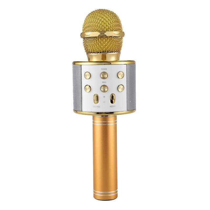 Wireless Bluetooth Karaoke Microphone  -  Gold / BUY ONE  -  Honey Locker -  Hidden