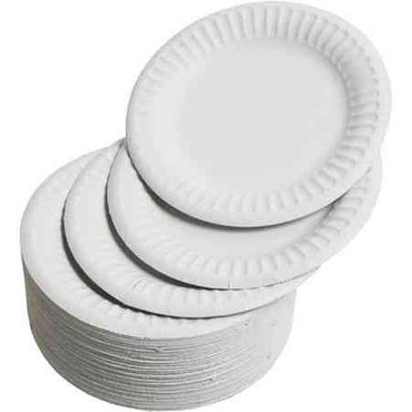 Disposable Plate (Small)