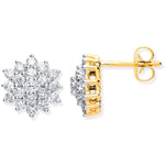 9ct Yellow Gold 1.00ct Diamond Cluster Stud Earrings