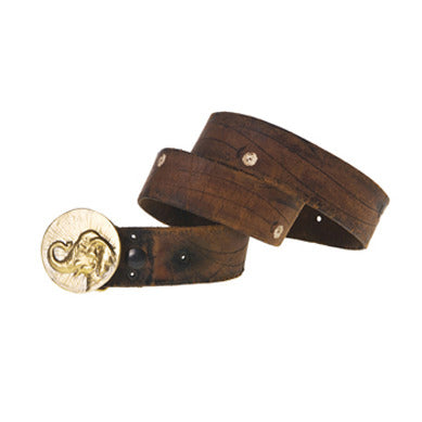 Lucky Elephant Coin Belt