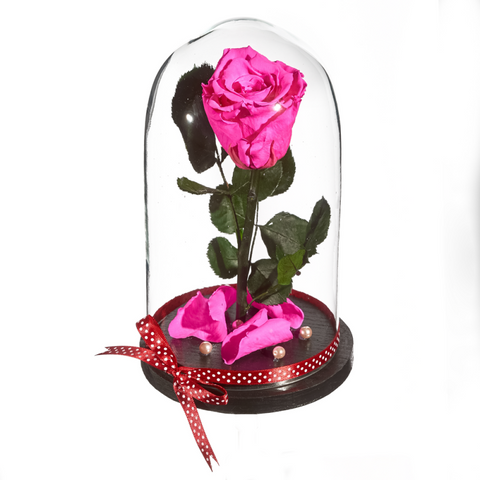 Beauty and The Beast Roses - Design 7