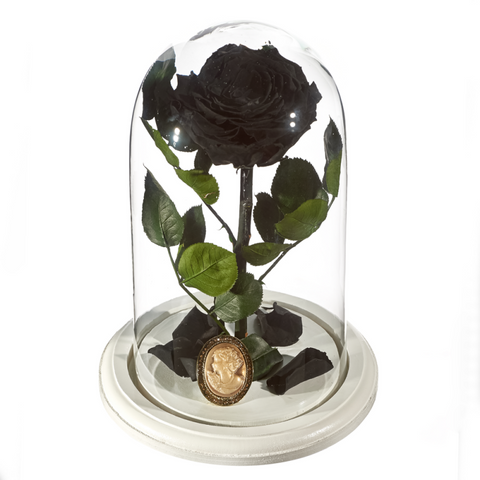Beauty and The Beast Roses - Design 5