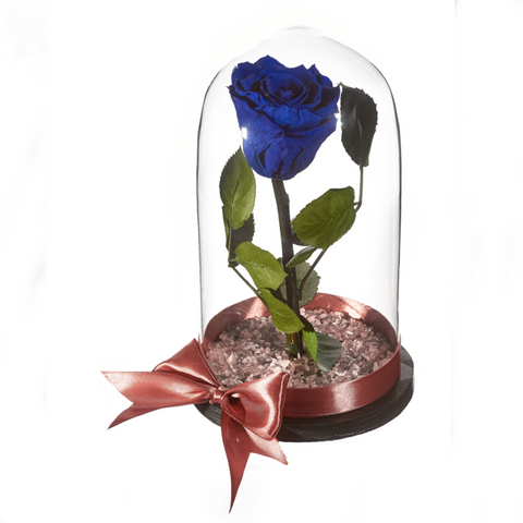 Beauty and The Beast Roses - Design 4