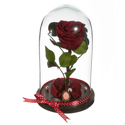 Beauty and The Beast Roses - Design 3