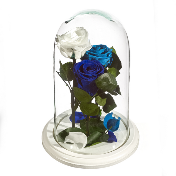 Beauty and The Beast Roses - Design 2