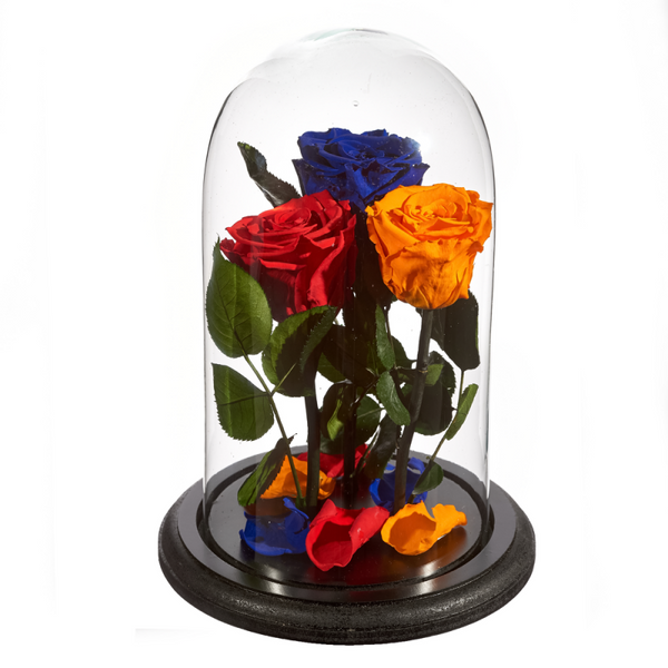 Beauty and The Beast Roses - Design 1