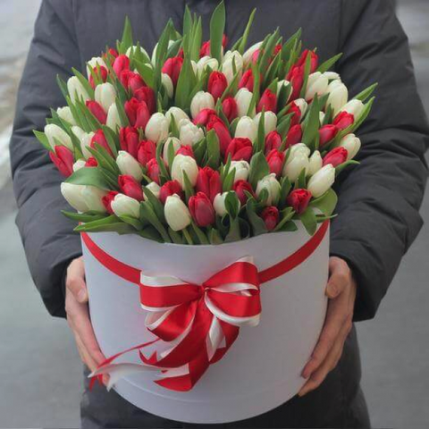 Box of 51 White and Red Tulips