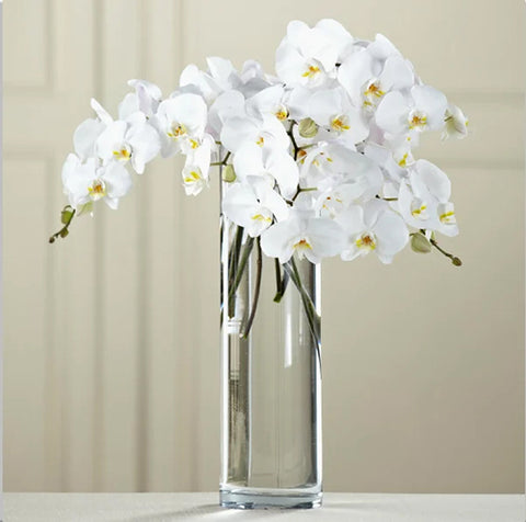 Phalaenopsis Orchids Centrepieces