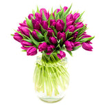 Purple Tulips Flowers Arrangement