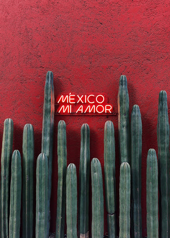 Mexico Mi Amor | Made In Mexico