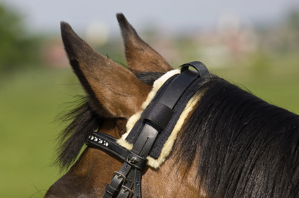 Poll Guard - Horsedream Importers - best sheepskin saddle pads