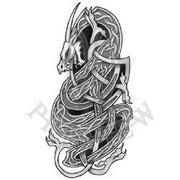 Knotted Viking Dragon BG