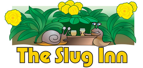 6 pack - Slug Inn