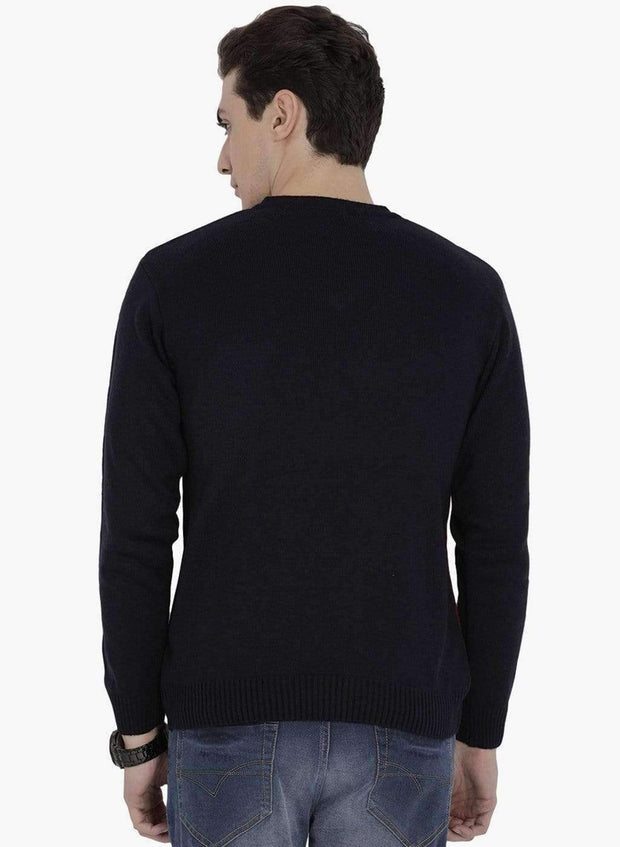 Multi Color V-Neck Sweater back view