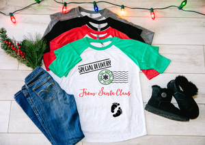 Special Delivery Pregnancy Christmas Raglan Shirt