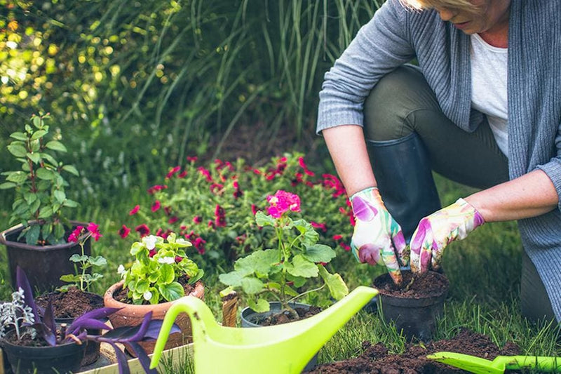 6 Health Benefits of Gardening