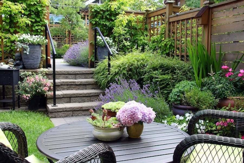 Top 5 Gardening Trends of 2019