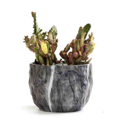 Marbled Ceramic Succulent/Cactus Planter Pots Set of 4
