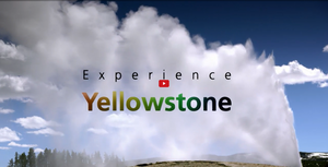 Experience Yellowstone
