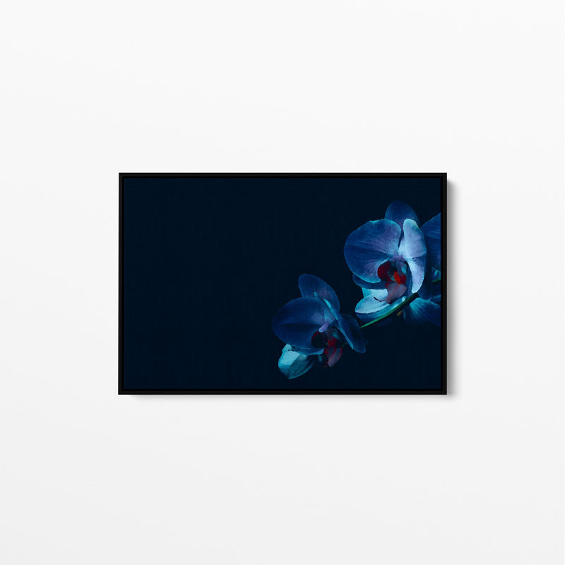 Blue Orchid - Dark Navy Blue Orchid Floral Stretched Canvas Wall Art