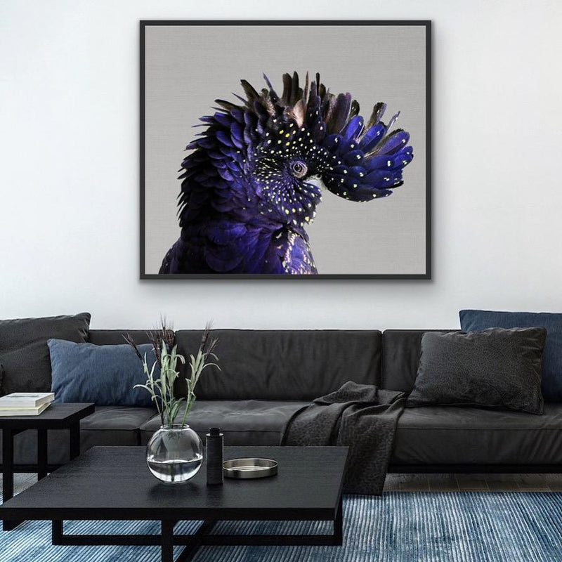 Black Cockatoo Wall Art