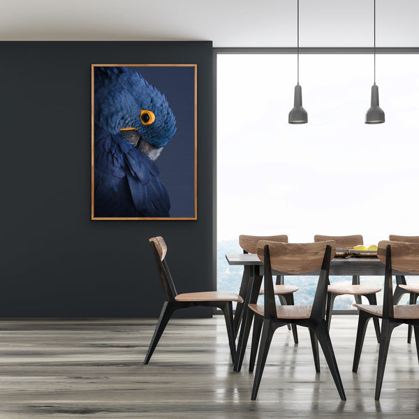Blue Parrot - Art Print Stretched Canvas Wall Art