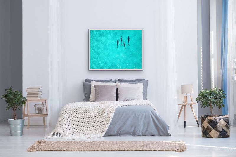 Dolphins swimming in aqua water wall art