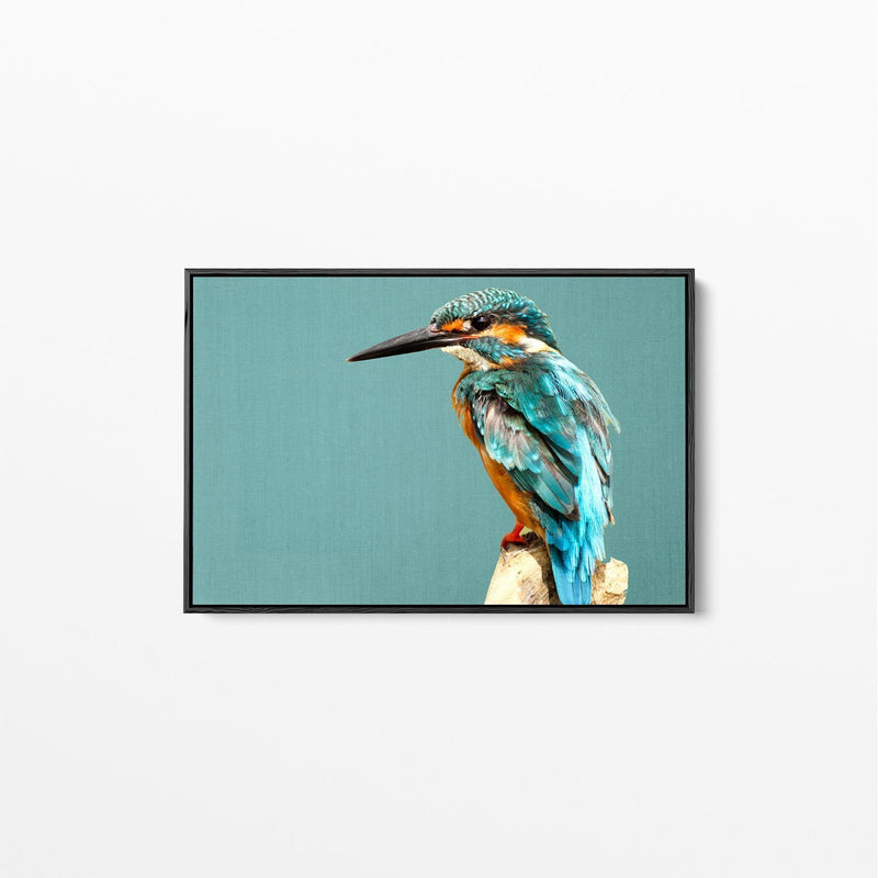 Kingfisher on Turquoise Linen Canvas Wall Art Print White Frame