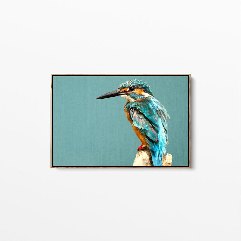 Kingfisher on Turquoise Linen Canvas Wall Art Print Natural Frame