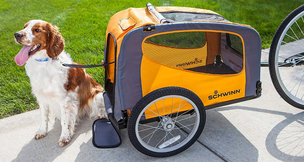Best 6 Dog Bike Trailers for Small & Large Pets [2020 Reviews]