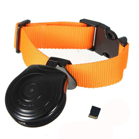 Digital Pet Collar Cam