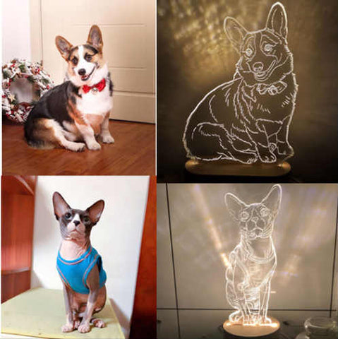 Personalized Pet Photo  LED Art Portrait Lamp