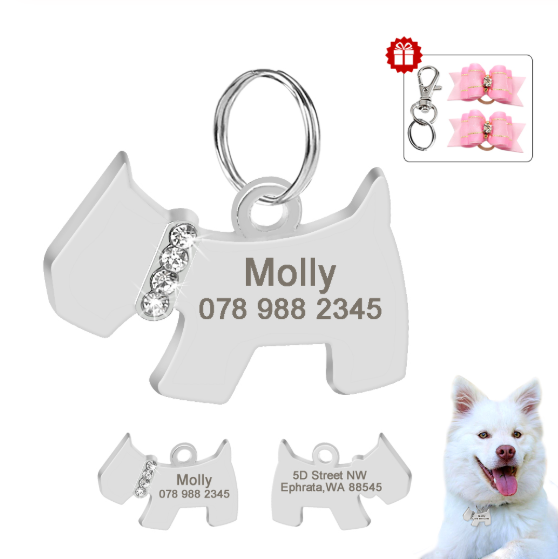 Personalized Dog ID Tag Dog Accessories Stainless Steel Anti-lost