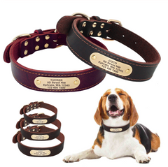 Dog Collar Leather Personalized Medium Large Dog Collars