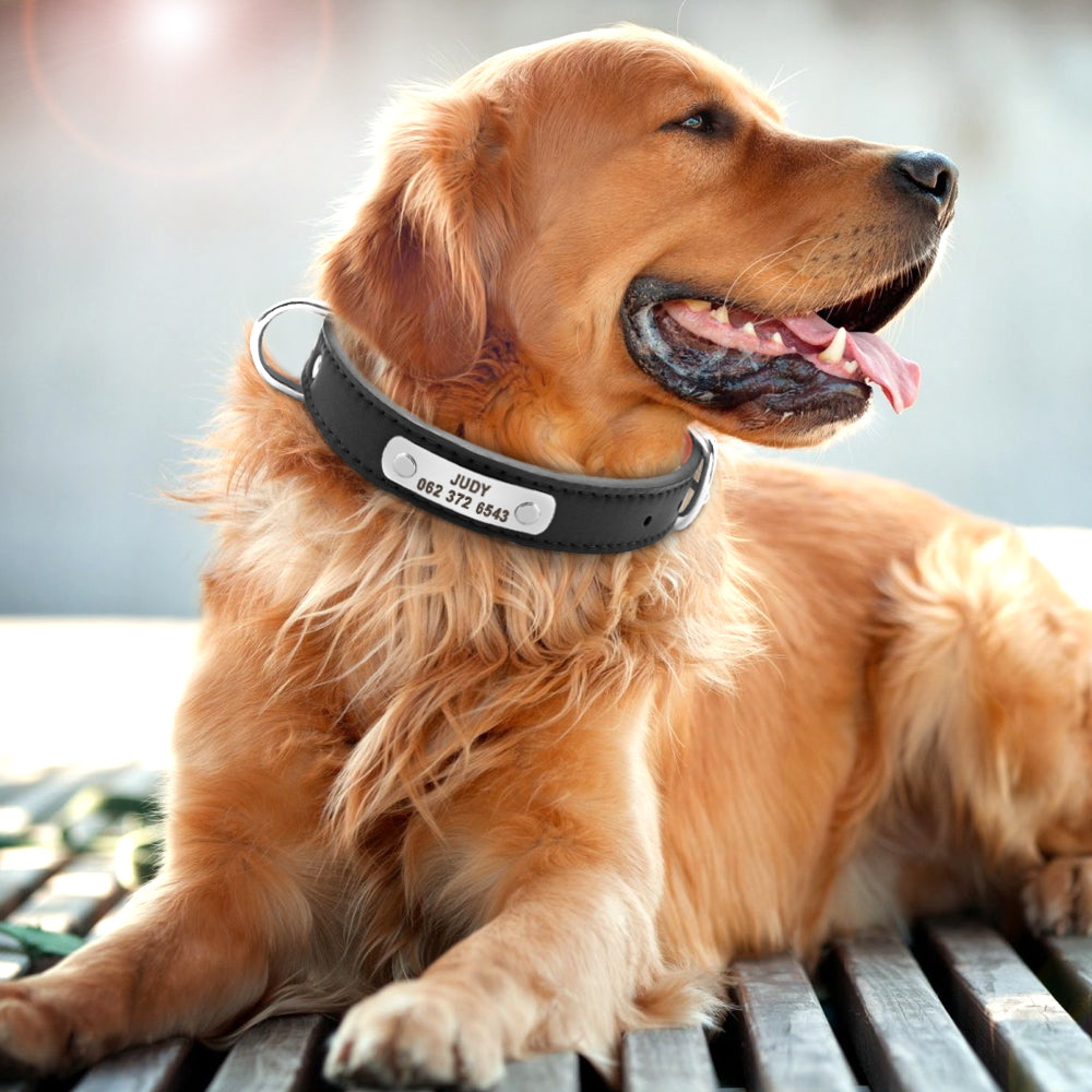 PU Leather Dog Collar Durable Padded Personalized Pet ID Collars