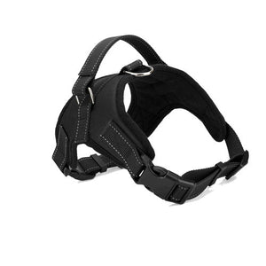 Large Adjustable Dog Harness Collar - aidaroos.com