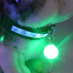 1 Pcs LED Pet Dog Collar Night Safety Pendant - aidaroos.com