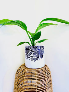 Spathiphyllum Sensation with Painted White Ceramic Pot