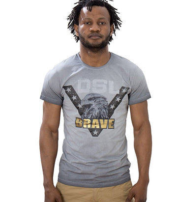 Diesel Men's Brave Eagle T-shirt In Grey