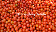 Load image into Gallery viewer, Australia Fresh Cherry Tomato