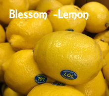 Load image into Gallery viewer, Australia Fresh Citrus Lemon