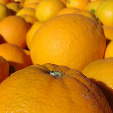 Load image into Gallery viewer, Fresh Australian Navel Orange
