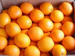 Fresh Australian Navel Orange
