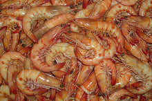 Load image into Gallery viewer, Frozen Shrimp, Prawns
