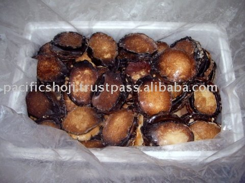 IQF Blacklip abalone meat