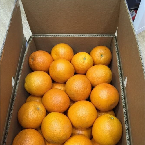 New crop fresh mandarin orange with good quality and cheaper price.