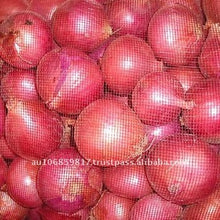 Load image into Gallery viewer, RED ONION
