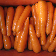 Load image into Gallery viewer, Wholesale sell sell fresh carrot